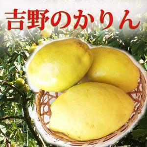 かりん 花梨 1kg 奈良県産 果実酒・ジュース用に