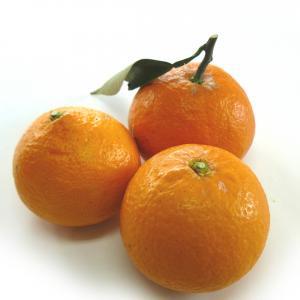 きよみ 清見 オレンジ 3キロ 和歌山県産 木で熟成・袋がけだから甘いっ!