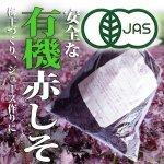 ◆初夏の味わい◆有機栽培 赤しそ 【300g】 奈良県・滋賀県産