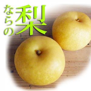 梨 なし、豊水・二十世紀梨発送9/10~2キロ(5〜7玉)奈良県産