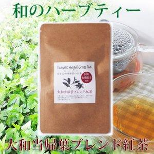 ◆紅茶が入ってさらに飲みやすい◆大和トウキ葉茶ブレンド紅茶【10g(2g×5)】