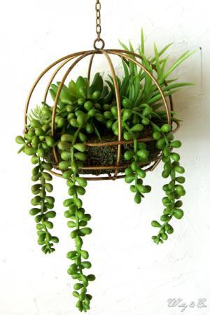 人工観葉植物 Succulent Wire Ball L ハ...