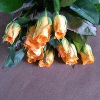 バラの花束(オレンジ)