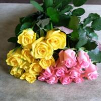ローズ・デュオ(ピンク&黄色)