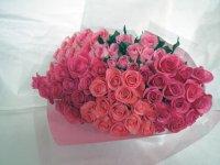 緑寿お祝いバラの花束(ピンク・クインテット)66本