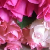追加用のバラ1本(トリオ・ザ・ピンク)