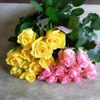 ローズ・デュオ(ピンク&黄色)70本