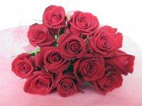 バレンタイン ダーズンローズ(赤)12本