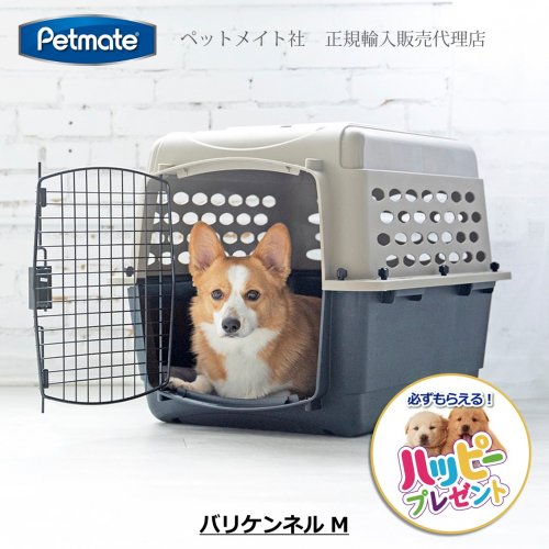 バリケンネル M【必ずもらえる! おもちゃ付き!!】