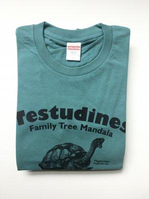 (38、39、40/04科学バー)巨亀メガロケリスTシャツ