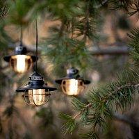 Barebones Living  Edison String Lights